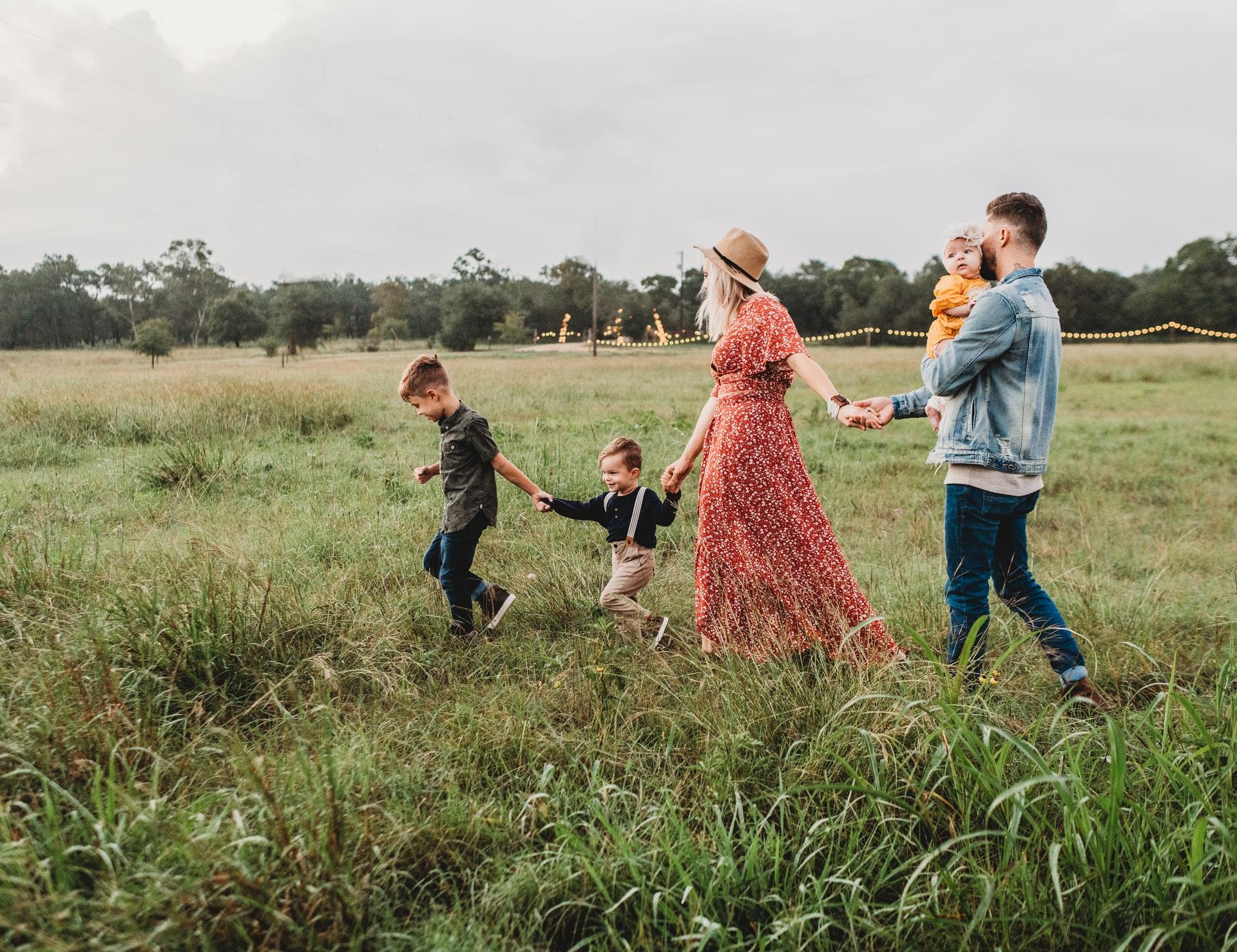 Страхование всей семьи от укуса клещей. Где лучше оформить онлайн